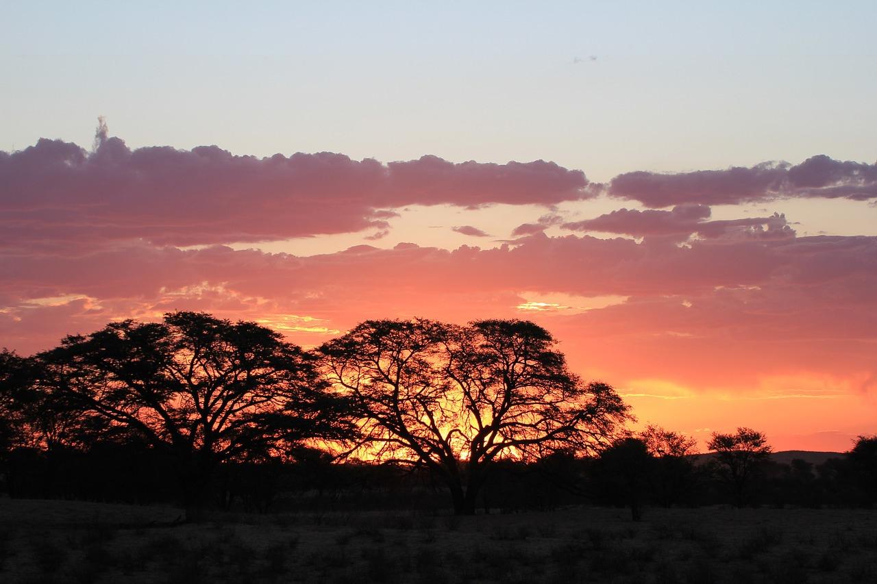 африка ночью фото заводили